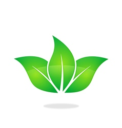 Green leaf three natural logo vector