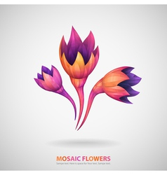 Mosaic flowers vector
