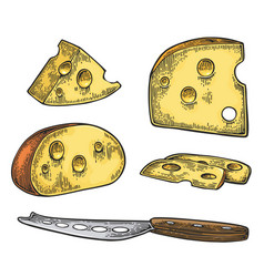 Pieces of cheese and knife half round head and vector
