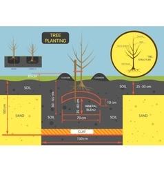 Planting tree concept prepare vector