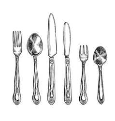 cutlery freehand pencil drawing set vector image