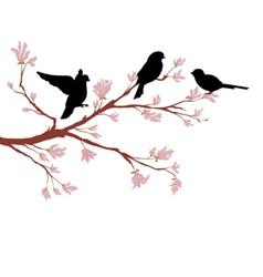 Birds on branch vector