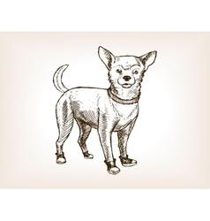 Chihuahua dog sketch vector