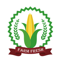 Farm fresh corn liifestyle healthy sticker vector