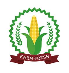 Farm fresh corn liifestyle healthy sticker vector