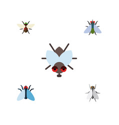 Flat icon fly set of hum fly bluebottle and vector