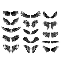 Wing set simple vector image