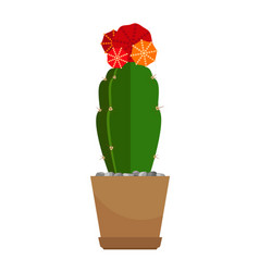 Cactus with red flower in pot vector