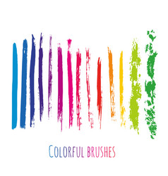 Collection with colorful brush strokes elements vector