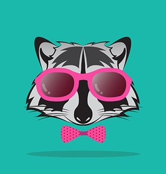 images of raccoon and glasses vector image vector image
