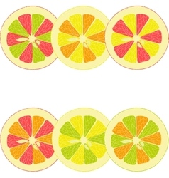 Lemon lime orange pink grapefruit vector
