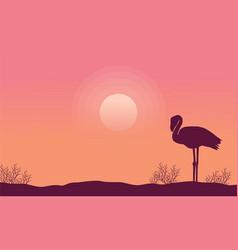 Silhouette flamingo scene collection stock vector