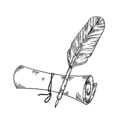 ancient scroll and pen engraving vector image