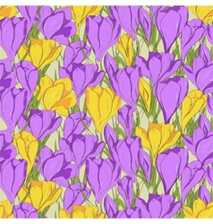 Crocus seamless patterm 1 purple yellow vector