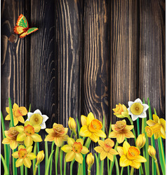 Daffodils flowers on the wooden background vector