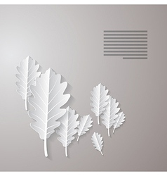 Oak Paper Leaves Background vector image vector image