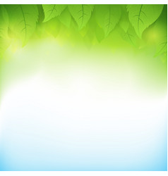 Abstract gradient green background with vector
