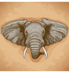 Engraving elephant head retro vector