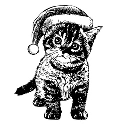Kitten with christmas hat vector