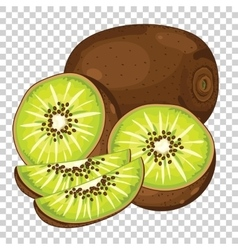 Kiwi isolated vector