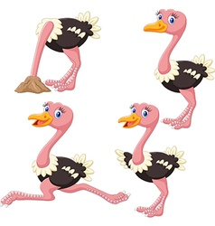 Cartoon funny ostrich collection set vector