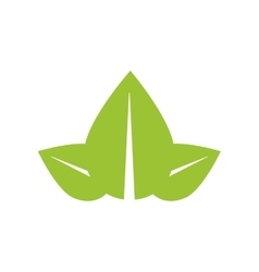 Leaf green plant nature season icon vector