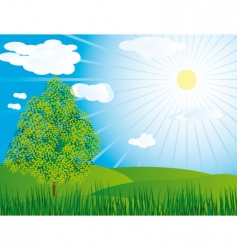 One tree in a meadow vector