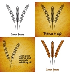 Set of wheat ears on different layers vector