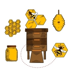 Beekeeping objects with bees and beehives vector