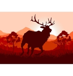Deer in wild nature landscape vector