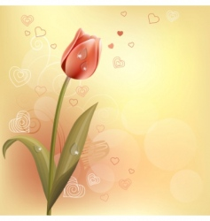 tulip and hearts background vector image vector image