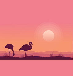 Silhouette flamingo scenery collection stock vector