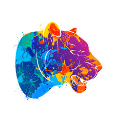 Abstract predatory cat leopard vector