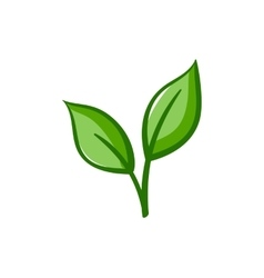 Eco icon green leaves vector
