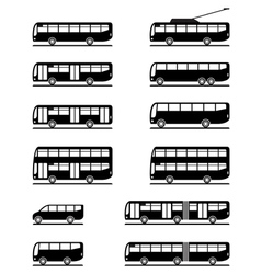 Buses and coaches vector