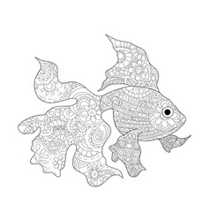 Goldfish coloring book for adults vector