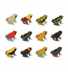 Various species of poison-dart frogs vector