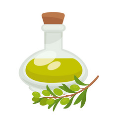 olive oil in bottle flat isolated icon vector image vector image