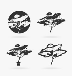 silhouette stencil tree vector image vector image