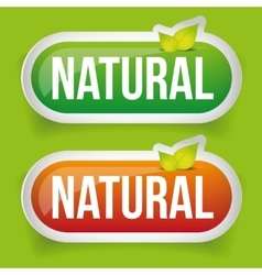 Natural Button green with leaf vector image
