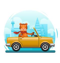 Cute tiger riding on car flat design cartoon vector