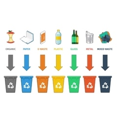Recycling bins separation Waste management vector image