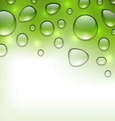 water abstract green background with drops place vector image vector image