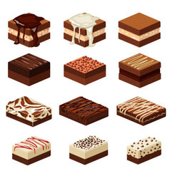 brownies vector image