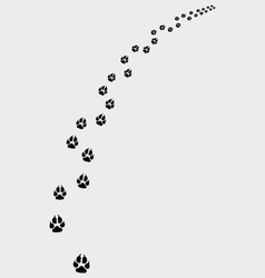 Trail of dogs vector