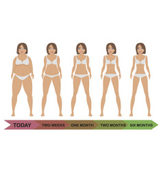 fat and thin girls vector image