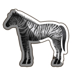 Isolated polygonal zebra design vector