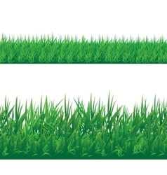 Set of seamless grass border isolated on white vector