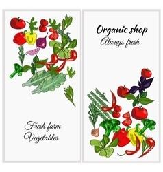 Fresh farm drawn vegetables on a white vector