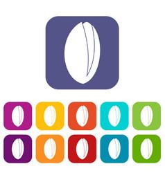 Pistachio nut icons set flat vector